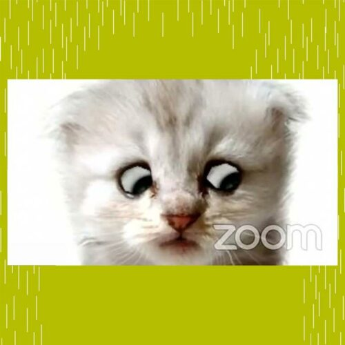 DEVENEY Crisis Blog - June 2021 - Zoom Hacking